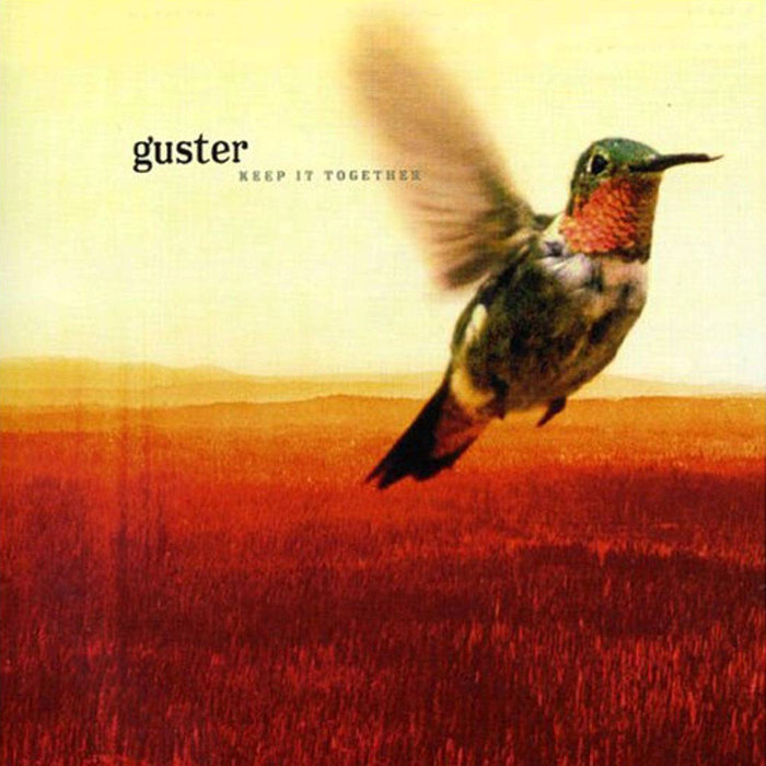 guster 1